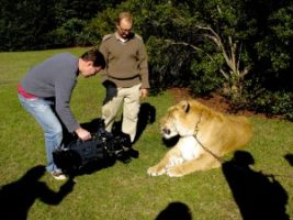 Liger Gets Friendly with Jimmy and The Varicam